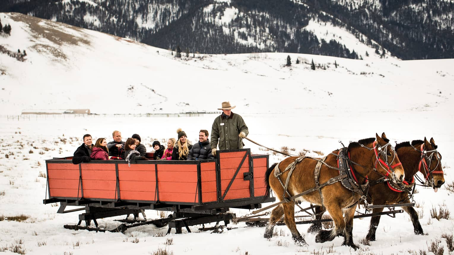 guests take a sleigh ride in the snow at Jackson Hole