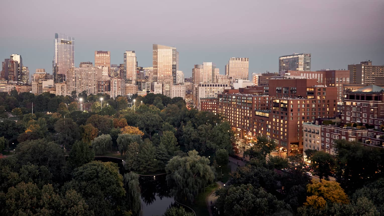 Aerial view of Boston Public Garden canopy of green trees and pond, buildings with lit windows and Boston city skyline at dusk